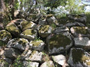 大溝城 本丸跡の石垣