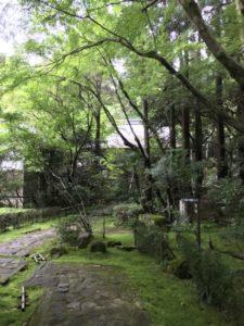 龍潭寺 園庭前
