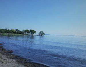 琵琶湖・湖岸