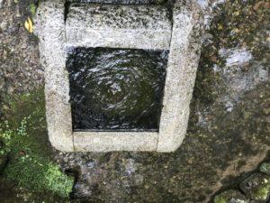 義景清水 湧水