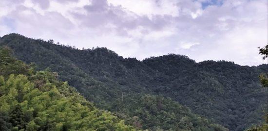 大桑城の遠景
