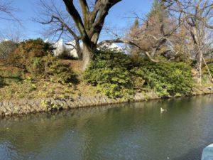 高崎城 堀と土塁