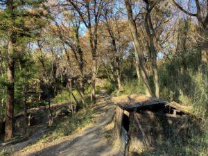 施設内の道路