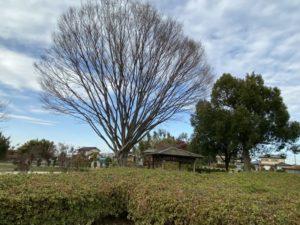 花見塚公園