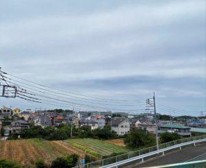山田神社からの眺め