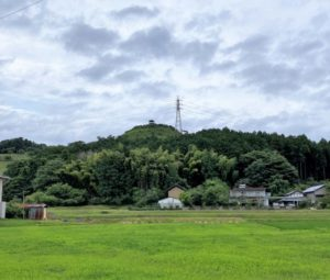 皆川城(遠景)