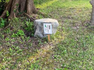 津幡城跡 物見台へ