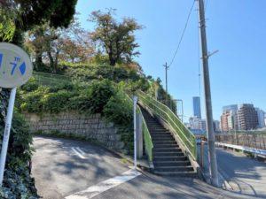 権現山城跡への道