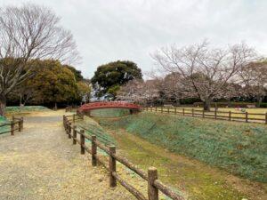 小山城跡(遠江国)・赤い橋