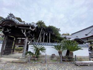 能満寺と大蘇鉄