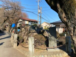 神木梶原杉の碑