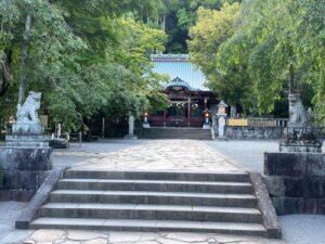 伊豆山神社 本殿 梛の木