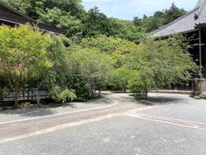 妙本寺 境内1