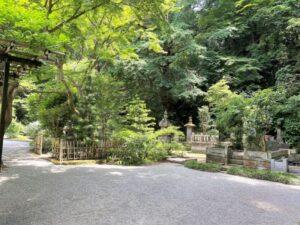 妙本寺 境内2