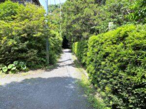 寿福寺 北条政子墓への道