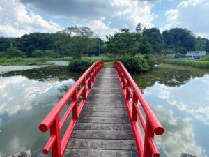 鳴かずの池 橋