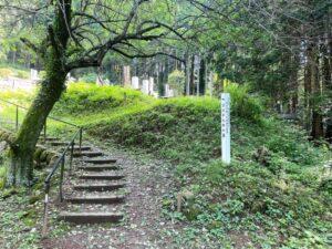 全洞院 渋沢平九郎の墓 入り口