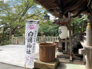 白幡神社 社殿のぼり旗