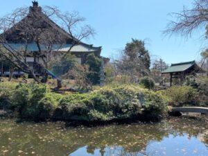 放生池 遊行寺