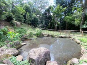 泉小次郎馬洗い池