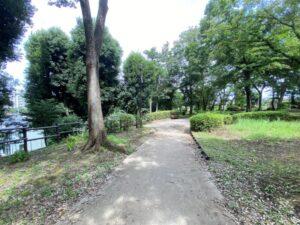 泉中央公園の小径